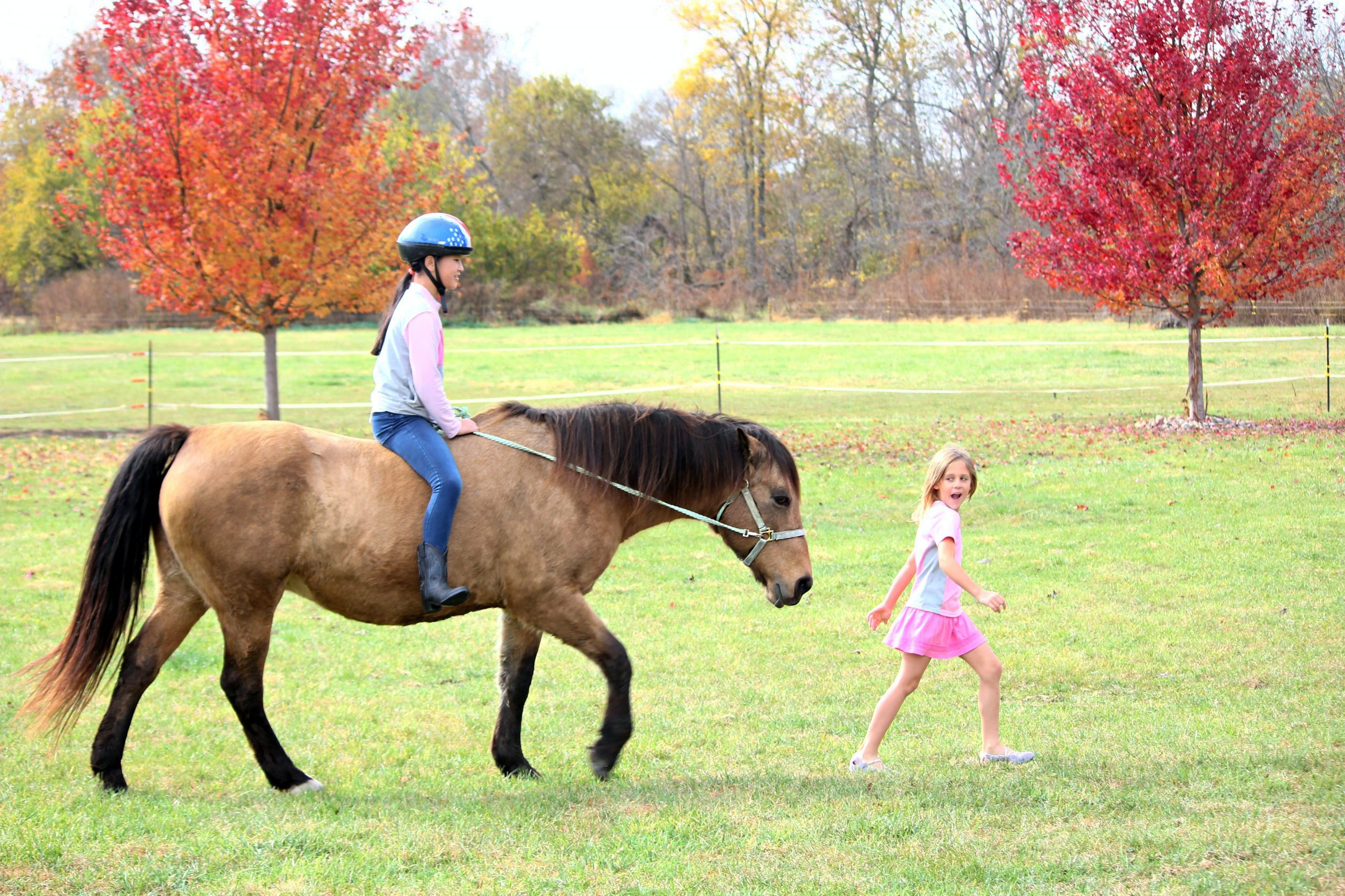 woman riding on brown horse near girl walking on grass during daytime